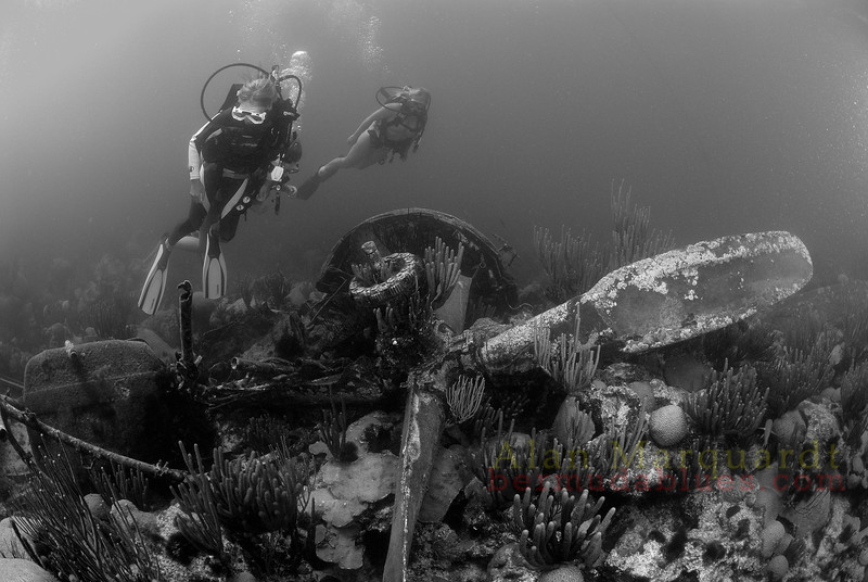 The air plane wreck lies in 30 feet of water. The plane crashed because of a fuel problem in 1961,<br /> west of Bermuda.