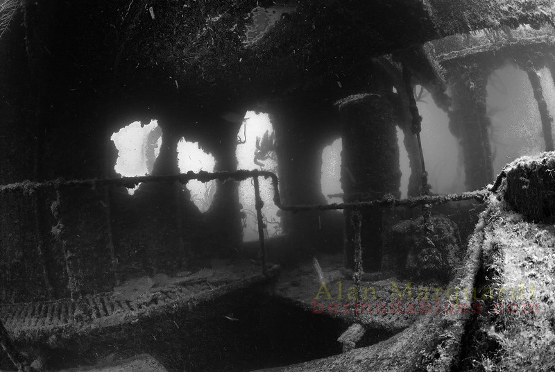 Inside the wreck of the DREDGER. A 171-foot, 338-ton dredger built in 1910 in Glasgow,<br /> and arrived in Bermuda in 1911. Worked as a dredger in Bermuda until replaced by<br /> newer technology in 1930 and then scuttled 5 miles inside North Rock, resting in 60 feet<br /> of water. <br /> Northern inner lagoon, Bermuda, 2009.
