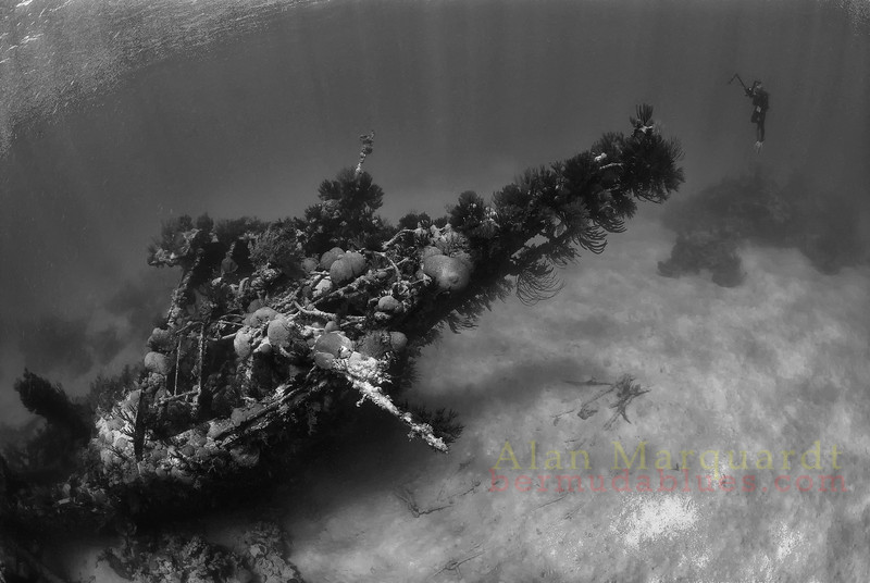 The bow section of the wreck of the North Carolina 1880.<br /> Western reef, Bermuda, 2009