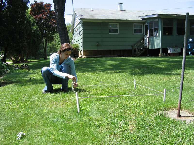 Sampling for carbon in a lawn.