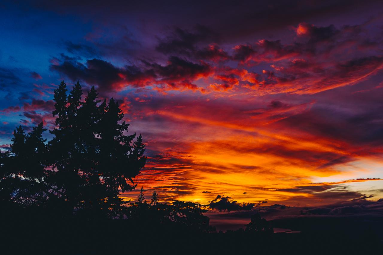 Evenings on the Homestead