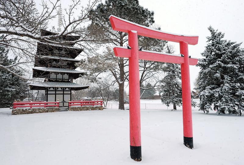 FEb 22 SNOW