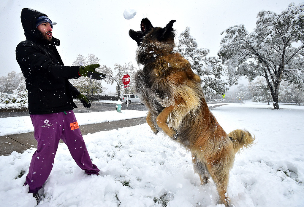 . Kelly Schneiderman throws a snowball for his dog Beeker to catch at North Boulder Park on a snowy Monday. It\'s his favorite thing to do says Schneiderman. For more photos go to dailycamera.com Paul Aiken Staff Photographer / Oct 9 2017