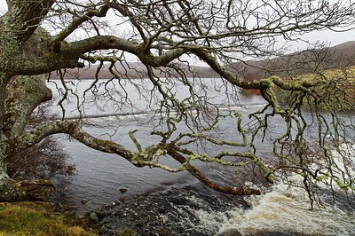 Badachro & Lochcarron areas --> ...
