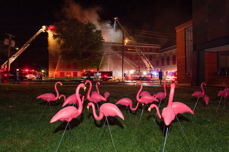 A flock of flamingos follow firefighters efforts as they fight a 4th Alarm fire in Fitchburg at the former BF Brown school at Elm & Academy St. SENTINEL&ENTERPRISE/ Jim Marabello