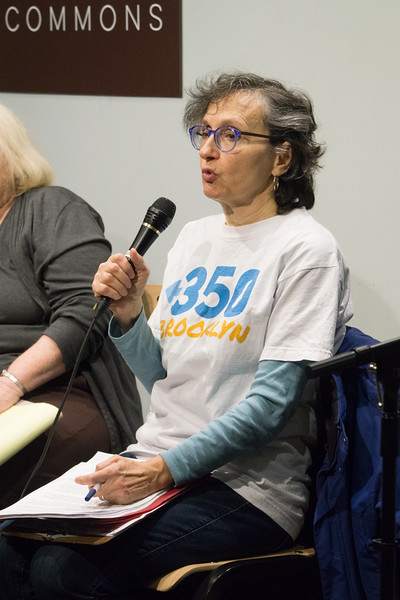 "Next was a report from Mimi Bluestone, of <a href=""http://350brooklyn.org/"" target=""blank""><b>350 Brooklyn</b></a>, the climate change group, who described the activities around various pipelines and other oil-related programs that are being fought."