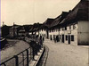Travnik 6