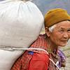 Hard working woman, Punakha valley