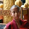 Novice Monk, Punakha Dzong