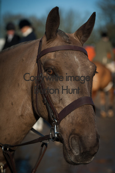 Burton Hunt 11th Jan 2014.