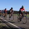 boca-bikerace-5-16_a-group-meadow2