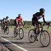 boca-bikerace-5-16_a-group-meadow-ten-dam1
