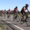 boca-bikerace-5-16_a-group-meadow1