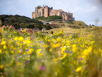 Bamburgh Castle (10)