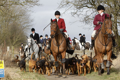 Members of the Four Shires Hunt,based in Derbyshire, UK, out following a ready made scent cross country. They do not chase foxes