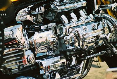 MUSCLEHEAD Bikes, Blues & Bar B Que Fayetteville, AR 2005