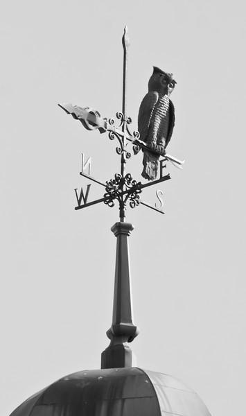 antique owl weathervane, Greenville high school, Greenville, Maine