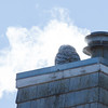 This young Snowy owl was showing great, adaptive intelligence. It has frequently been seen on this very roof top, enjoying the heat from the chimney. On this particular day, the temps were in the single digits with wind chills below zero. It could very well have been ten degrees warmer where this bird was perched. It could have meant the difference between death and survival. Biddeford Maine January 24, 2014