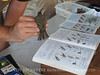 Dusky Flycatcher, JIBS, GA 10-1-2012 (17)