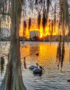 Lake Morton, Lakeland