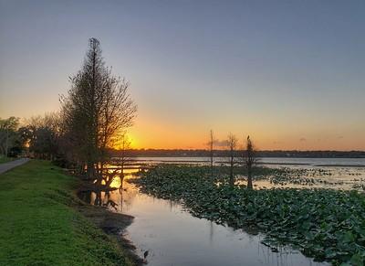 Lake Hollingsworth, Lakeland