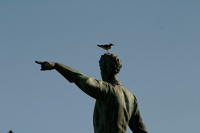 """""""Get off my head!"""" the Stockholm statue seems to be saying to the gull [July; Stockholm, Sweden]"""