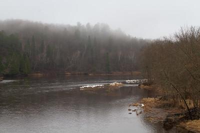 American White Pelican flock St  Louis River at Fond du Lac Bridge Duluth MN -5715