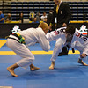 IBJJF PANS Saturday (221 of 261)
