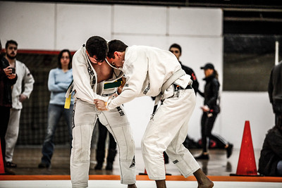 Grappling Industries 2017 Chicago 12Feb2017 (8)