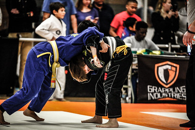 Grappling Industries 2017 Chicago 12Feb2017 (7)