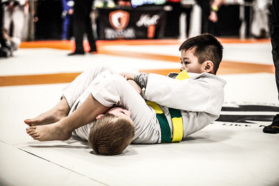 Grappling Industries 2017 Chicago 12Feb2017 (20)