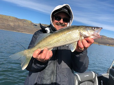 Dave Graybill caught this nice walleye on Banks Lake with BJ.