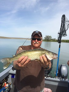BJ caught this walleye on Moses Lake.