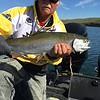 BJ caught this big trout on Potholes Reservoir.