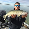 James caught this large walleye with BJ on Potholes Reservoir.
