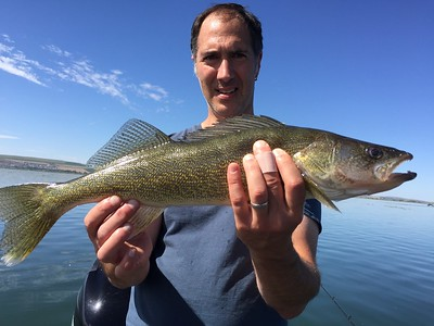 Another big walleye for Kent.
