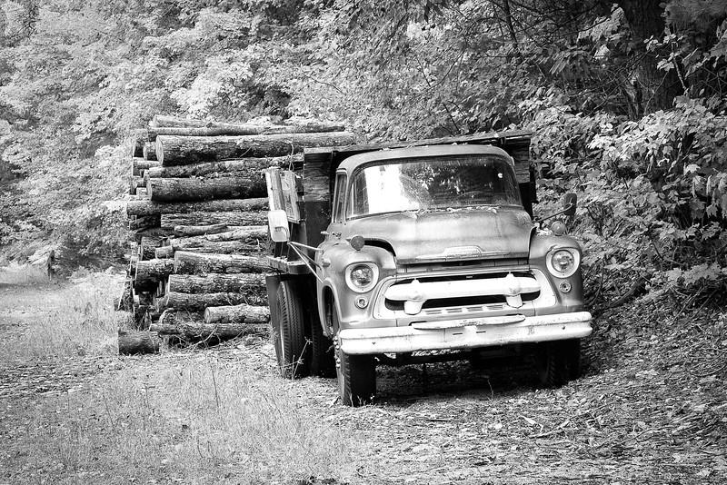 Logging truck, Munising, MI