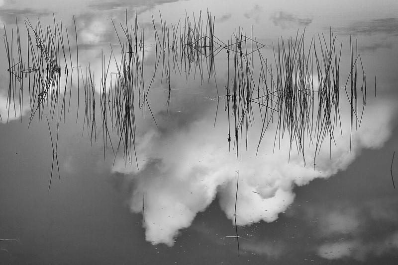Reflections, Halfway River NS