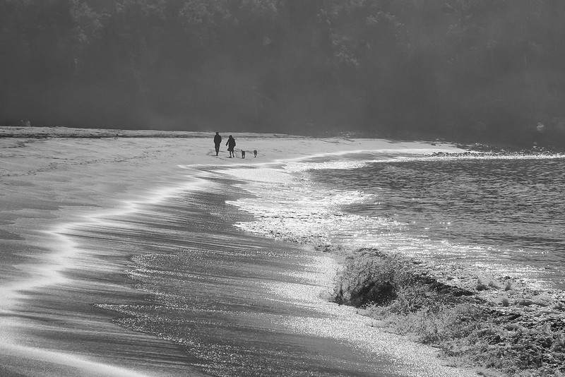 Walkers at Sand Beach, Acadia National Park, Maine