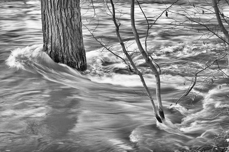 Delugional--Dupage River, Naperville IL