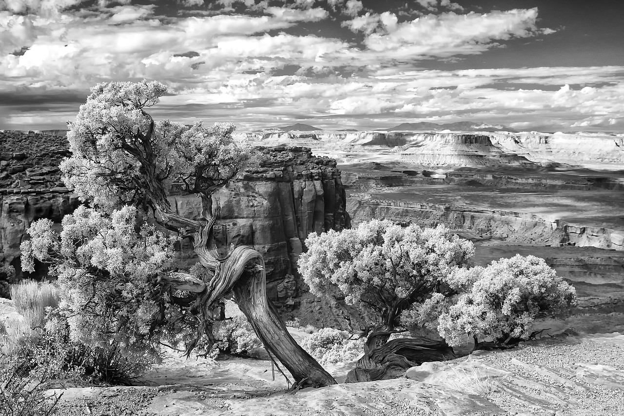 Story Old as Time - Canyonlands National Park