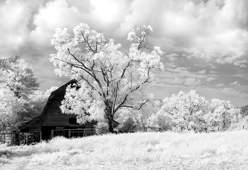 Simpler Times - Ouachitas of Arkansas - August 2014