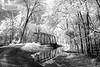 Dale Bend Bridge - Petit Jean River -Dardanelle, Arkansas - April 2013 - Infrared