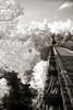 Old Train Trestle - Ouachita