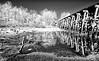 Old Train Tressle