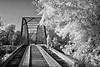 A Peaceful Journey Into the Light - Russellville, Arkansas