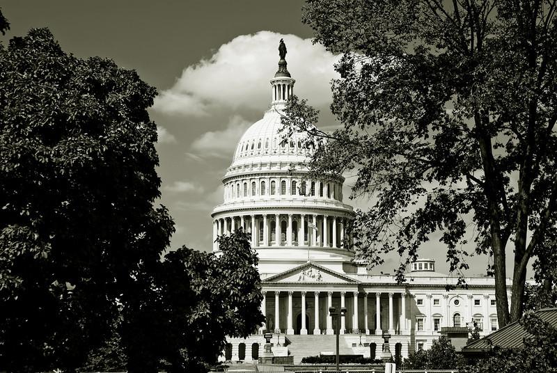 U.S. CAPITOL BUILDING 4499 B&W