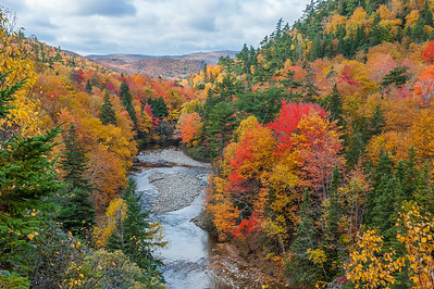 Autumn scenery on the east side of the Cabot Trail along the St. Ann's loop