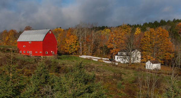 An autumn farm scene near Saltspring on the Trans Canada Highway in Pictou County