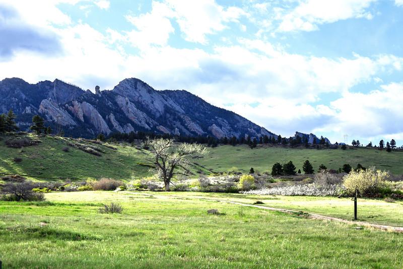 Mesa Trail